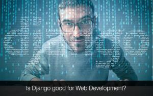 Django development company, Django development services, Django developers India